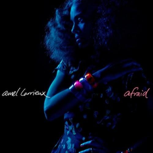 Amel Larrieux - Afraid-t500x500