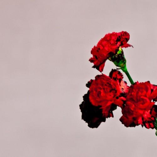 John Legend Love In The Future Cover