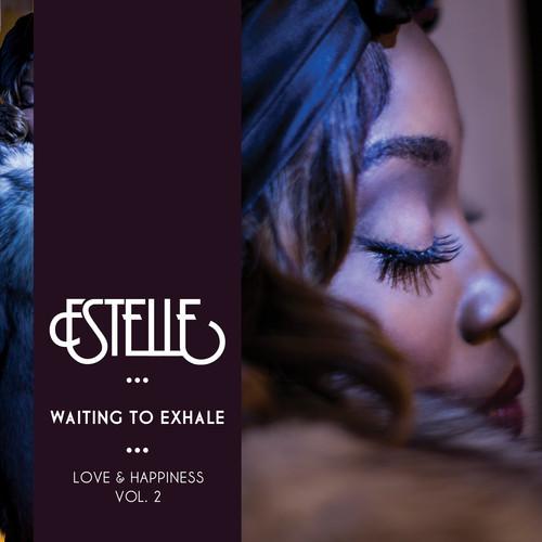 Estelle Waiting To Exhale 500x500
