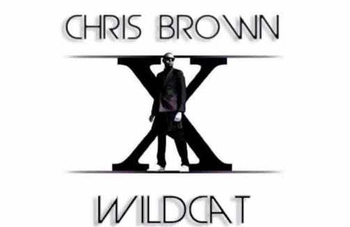 chris-brown-wildcat-thatgrapejuice