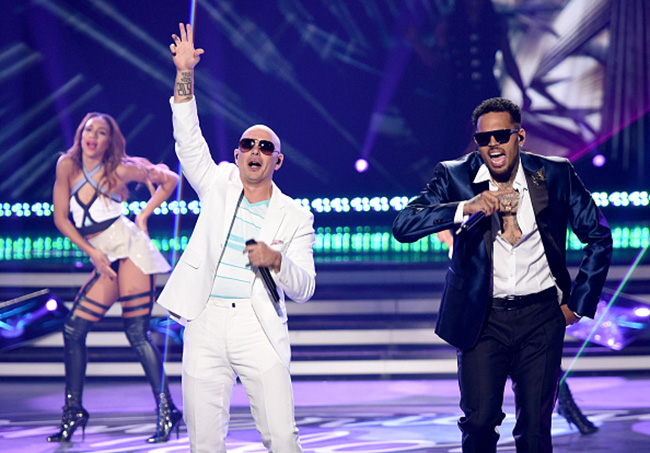 pitbull-cb-idol