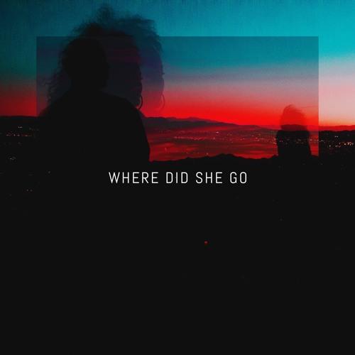 wheredidshego