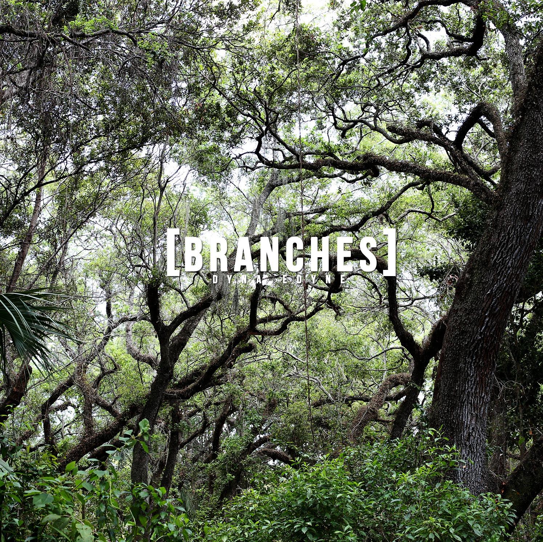 Dyna Edyne Branches